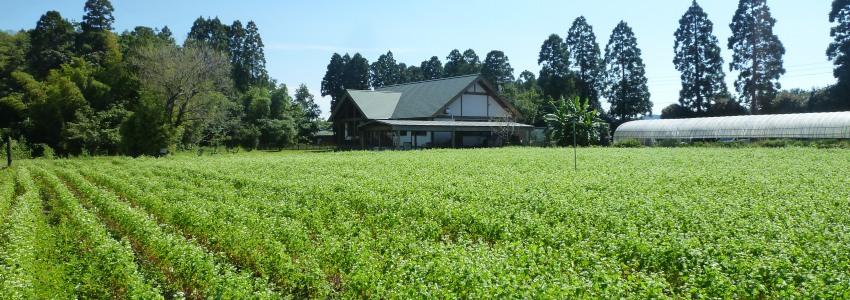 宮崎・綾フードビジネス研究会 農商工連携 六次産業化を後押しします イメージ画像