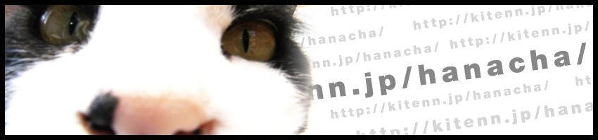 20091118-img_main.jpg